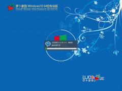 萝卜家园Windows 10 21H1原版64位下载 v0521