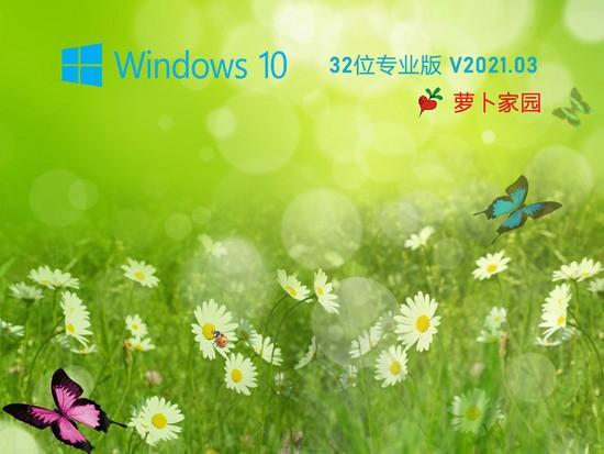 萝卜家园 Ghost Win10 32位 纯净专业版 V0527下载