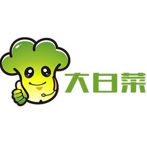 大白菜一键装机工具的使用教程 v0527