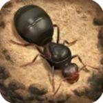 蚂蚁地下王国内购破解版